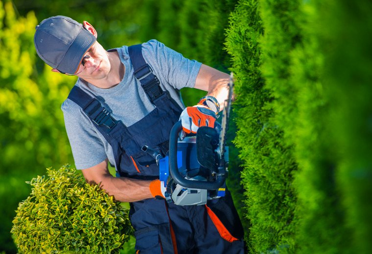 Facilities Management Software - Garden Maintenance